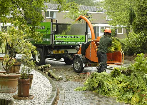 Image of Laverock Tree Care Chipper